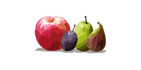 2008tokotowa-fruites